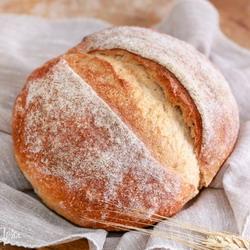 Пословицы про хлеб